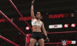 wwe 2k19 for windows 7 full version
